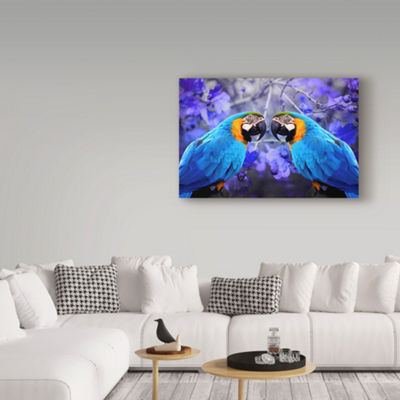 Trademark Fine Art Ata Alishahi Bird Collection 32Giclee Canvas Art