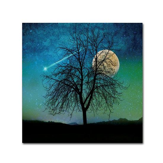 Trademark Fine Art Tina Lavoie Opalescent Sky Giclee Canvas Art