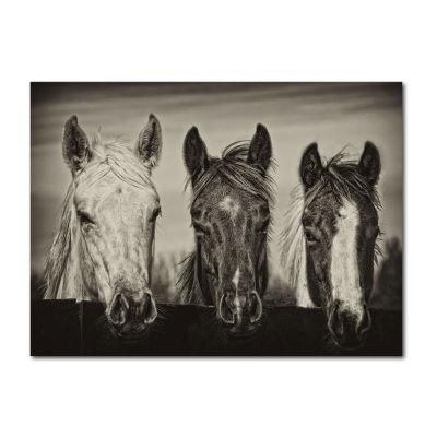 Three Amigos Canvas Art