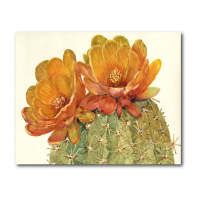 Cactus Blossoms II Canvas Art