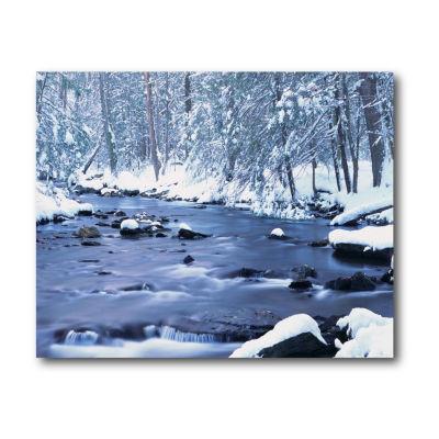 Winter Chill Canvas Art