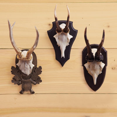 Two's Company Set Of 3 Antler Trophy Reproductions