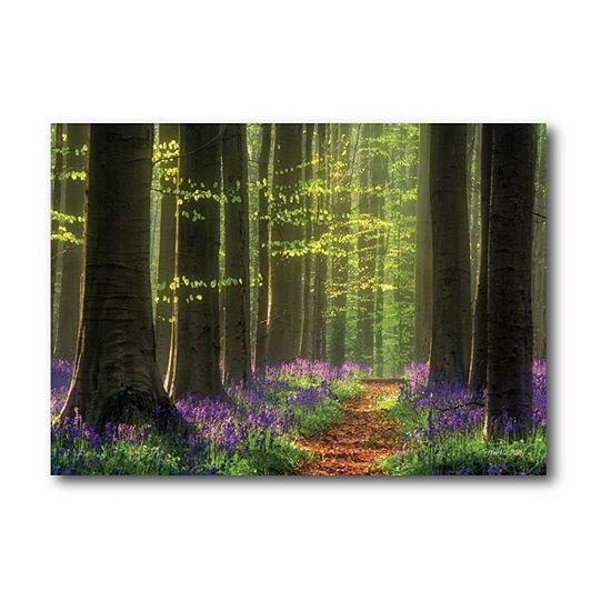 Courtside Market Enchanted Irish Forest Canvas Art