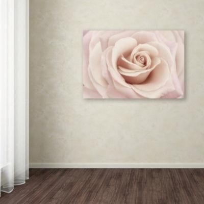 Trademark Fine Art Cora Niele Peach Pink Rose Giclee Canvas Art
