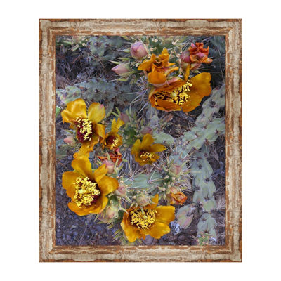 Buckhorn Cholla Framed Canvas Art