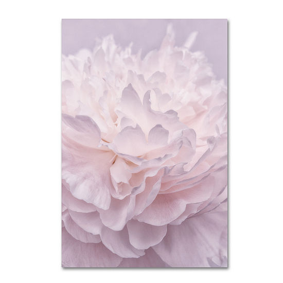 Trademark Fine Art Cora Niele Pink Peony Petals I Giclee Canvas Art
