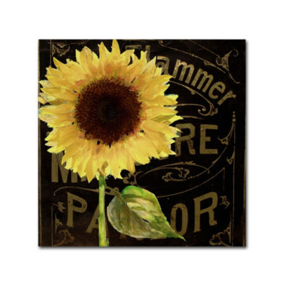 Trademark Fine Art Color Bakery Sunflower Salon IGiclee Canvas Art