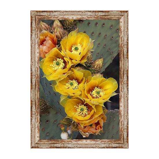 Blind Prickly Pear Framed Canvas Art