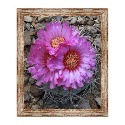 Devils Head Cactus Framed Canvas Art