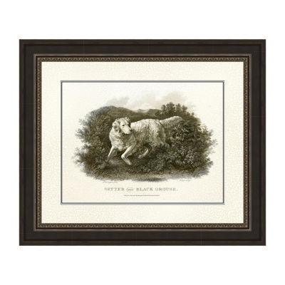 Antique Setter and Black Grouse Framed Print