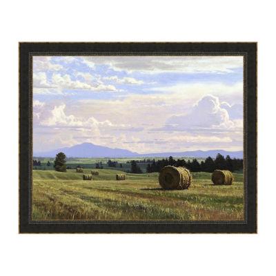 Fresh Cut Hay Framed Print
