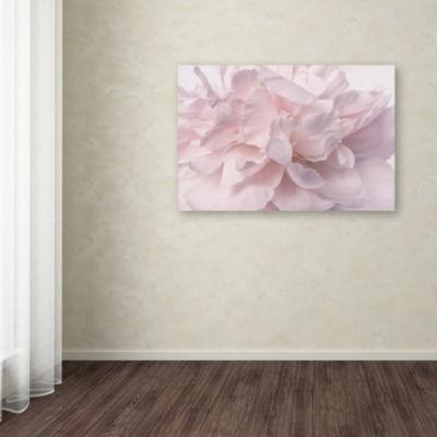 Trademark Fine Art Cora Niele Pink Peony Petals IIGiclee Canvas Art