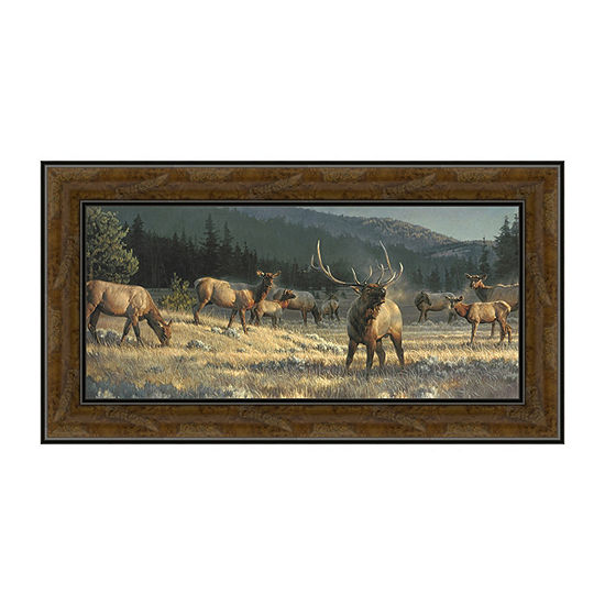 Rocky Mountain Meadow Framed Canvas Art