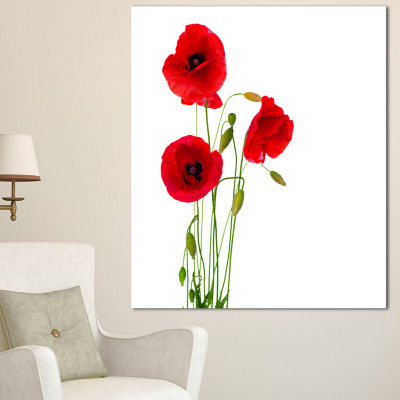 Designart Isolated Red Poppy Flowers Floral CanvasArt Print - 3 Panels