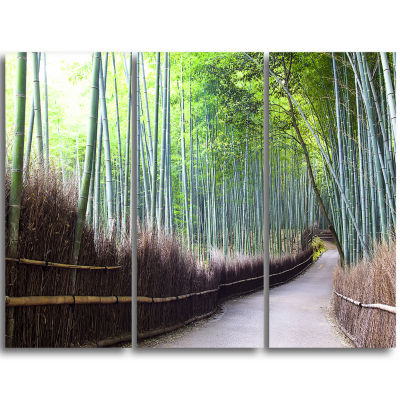 Designart Kyoto Bamboo Forest Pathway Forest Triptych Canvas Wall Art Print