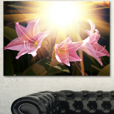 Designart Large Pink Flowers With Sunlight Large Flower Canvas Art Print
