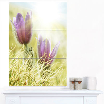 Designart Large Purple Flowers In Green Grass Floral Canvas Art Print - 3 Panels
