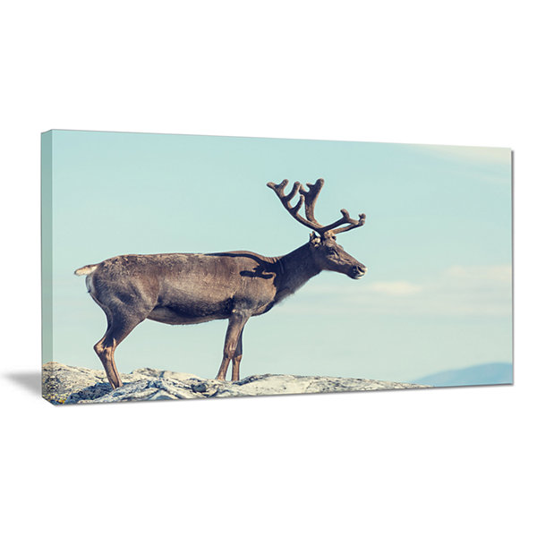 Design Art Large Reindeer In Norway Abstract CanvasArt Print
