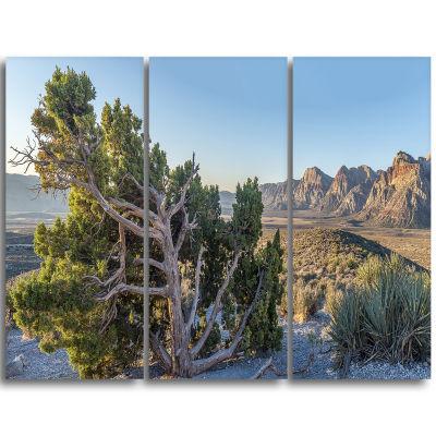 Designart Large Rock Canyon Panorama Landscape Triptych Canvas Art Print