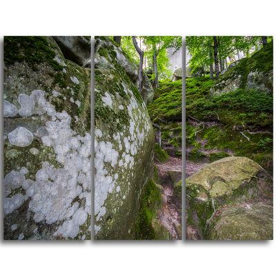 Designart Large Rocks In Deep Moss Forest Landscape Triptych Canvas Art Print