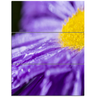 Design Art Large Violet Flower Petal Close Up LargeFlower Triptych Canvas Wall Art