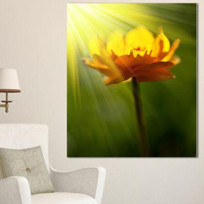 Designart Large Yellow Flower In Spotlight Large Flower Canvas Art Print