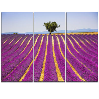Designart Lavender And Lonely Tree Uphill Oversized Landscape Wall Art Print