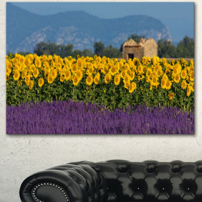 Designart Lavender And Sunflower In Provence Floral Canvas Art Print