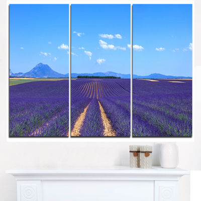 Designart Lavender Blooming Fields And Trees Oversized Landscape Wall Art Print