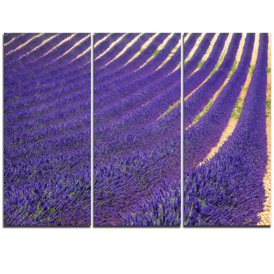 Design Art Lavender Blooming Fields As Texture Oversized Landscape Wall Art Print