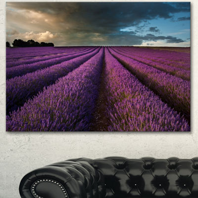 Designart Lavender Field And Dramatic Sky Floral Canvas Art Print