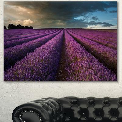 Designart Lavender Field And Dramatic Sky Floral Canvas Art Print - 3 Panels