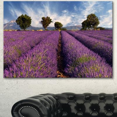 Designart Lavender Field On Windy Afternoon LargeFlower Canvas Wall Art
