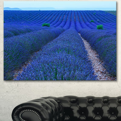 Designart Lavender Field Sunset Near Valensole Floral Canvas Art Print