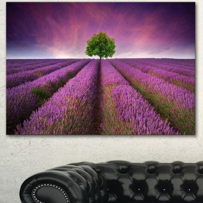 Designart Lavender Field Sunset With Single TreeFloral Canvas Art Print