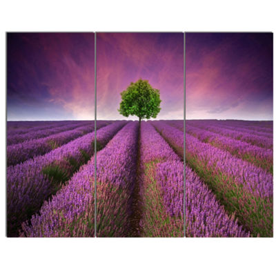 Designart Lavender Field Sunset With Single TreeFloral Canvas Art Print - 3 Panels