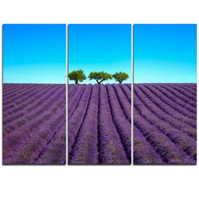 Designart Lavender Flowers And Uphill Green TreesOversized Landscape Wall Art Print