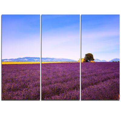 Designart Lavender Flowers With Old House Oversized Landscape Wall Art Print