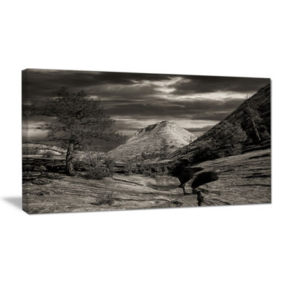 Designart Layers Of Red Rock Black And White Landscape Canvas Art Print