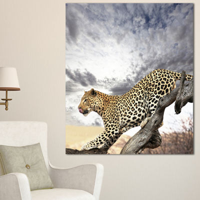 Designart Leopard On Tree Under Cloudy Sky AfricanWall Art Print - 3 Panels