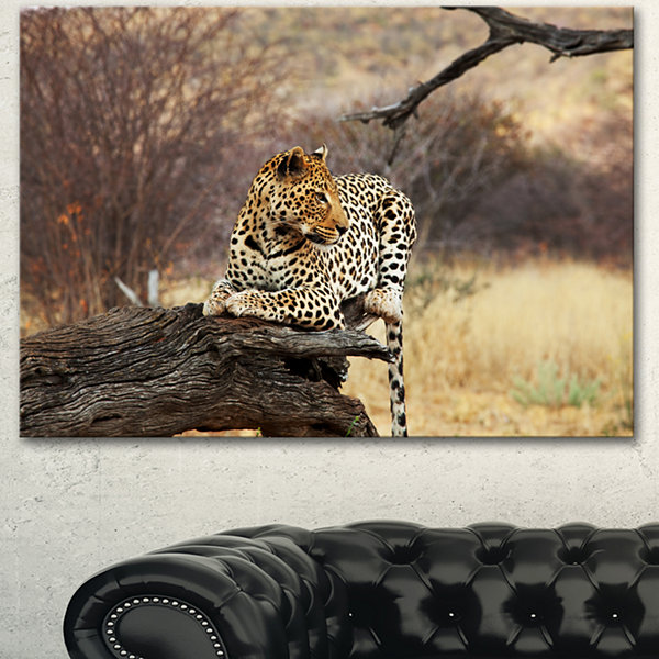 Designart Leopard Sitting On Tree Trunk Extra Large African Canvas Art Print - 3 Panels