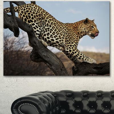 Designart Leopard Walking On Tree African Canvas Art Print - 3 Panels