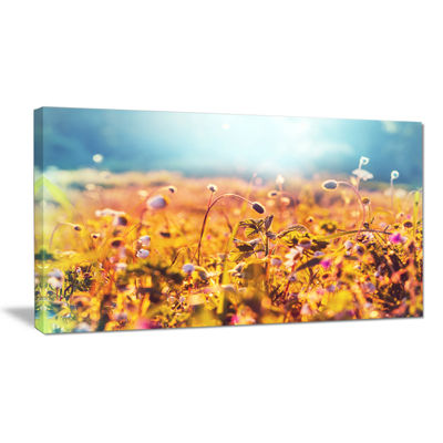Designart Little Mountain Flowers On Sunny Day Large Flower Canvas Wall Art