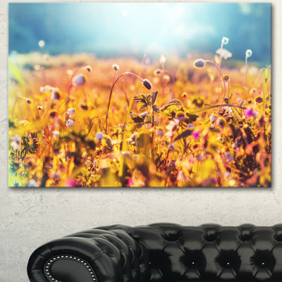 Designart Little Mountain Flowers On Sunny Day Large Flower Canvas Wall Art - 3 Panels