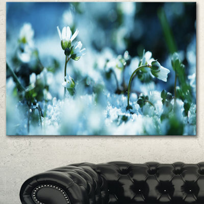 Designart Little White Flowers In Meadow Large Flower Canvas Wall Art