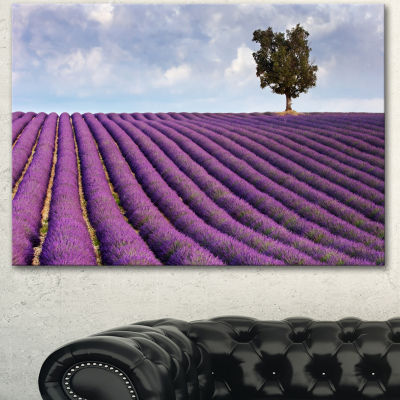 Designart Lone Tree In Provence Lavender Field Landscape Canvas Wall Art