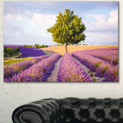 Designart Lonely Green Tree In Lavender Field Extra Large Landscape Canvas Art - 3 Panels