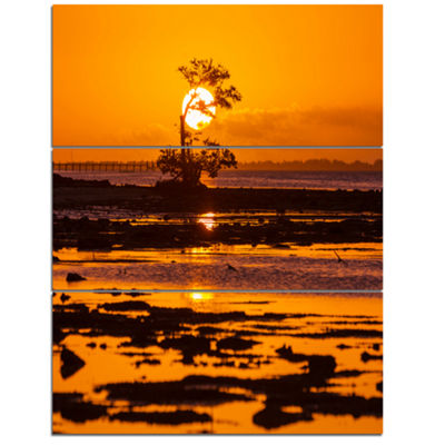 Designart Lonely Mangrove In Florida Coast AfricanLandscape Canvas Art Print - 3 Panels