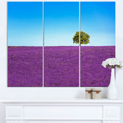 Designart Lonely Tree In Lavender Field OversizedLandscape Wall Art Print