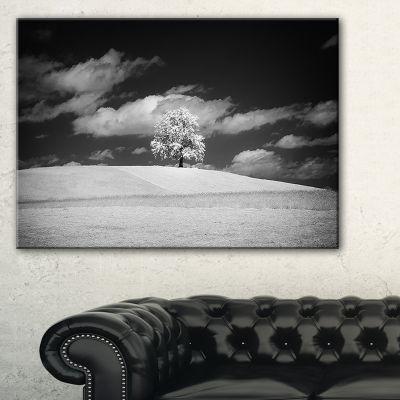 Designart Lonely Tree On Meadow Black White Landscape Artwork Canvas